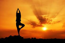 yogams